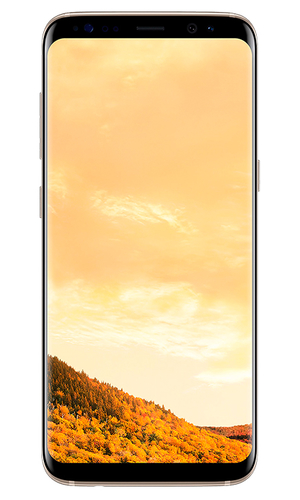 Samsung Galaxy S8+ 64Gb G955F желтый топаз